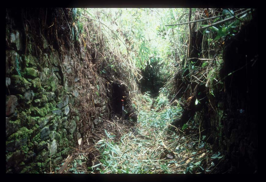 sunken walkway through Llactapata site